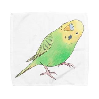 首傾げセキセイインコ ピーちゃん【まめるりはことり】 Towel handkerchiefs