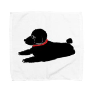 トイプーブラック Towel handkerchiefs