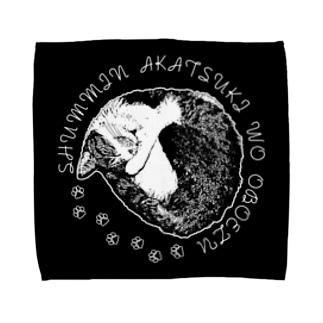 CAT_22_1W_BL Towel handkerchiefs