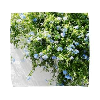 ルリマツリ Towel handkerchiefs