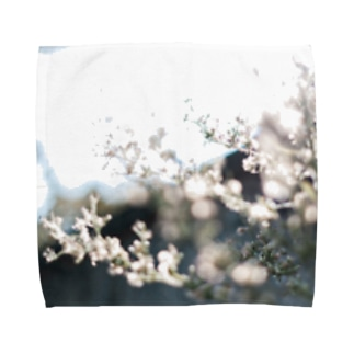 秋霞(akigasumi) Towel handkerchiefs