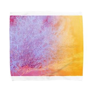 キラキラ植物 Towel handkerchiefs