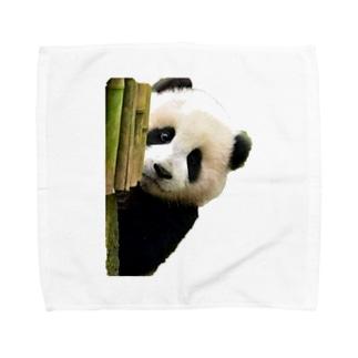 可愛いあの子 Towel handkerchiefs