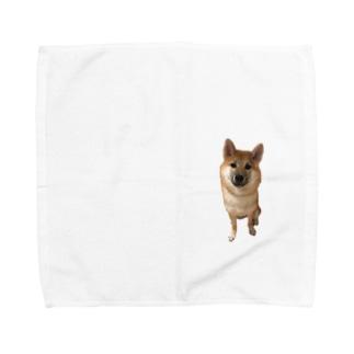 ちょこんとアリス Towel handkerchiefs