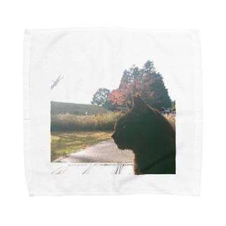 ボス猫 Towel handkerchiefs