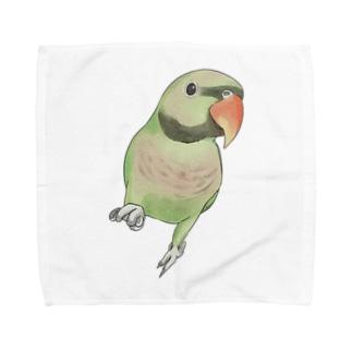 ご機嫌なダルマインコちゃん【まめるりはことり】 Towel handkerchiefs