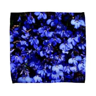 駿河屋ガルスのブルーブルー Towel handkerchiefs