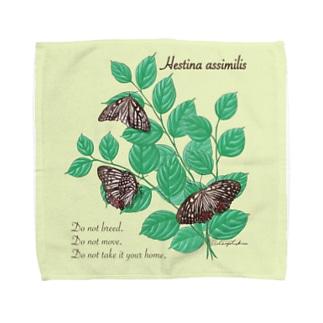 アカボシゴマダラとエノキ Towel handkerchiefs