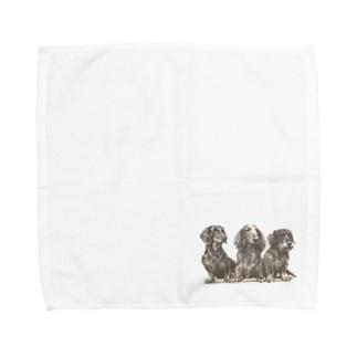ダックスフンド  Towel handkerchiefs