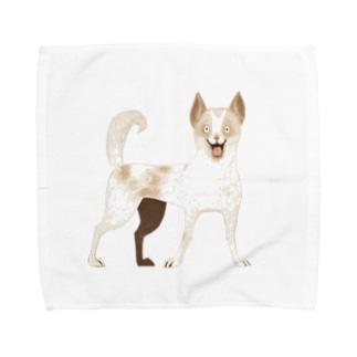 東堂 優 /Yu TODOのご主人にあえて幸せなほご犬さん Towel handkerchiefs