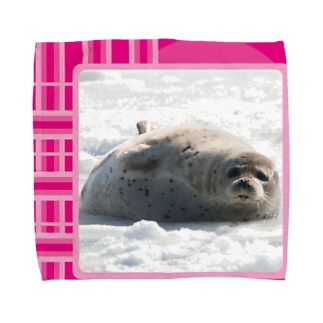 【にこらび】笑顔広げるアザラシ◇桃004 Towel handkerchiefs
