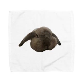 くろちゃん Towel handkerchiefs