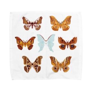 身近なヤママユガ科(♂)7種 Towel handkerchiefs