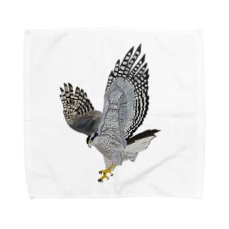 オオタカ_D〜美しき猛禽類〜 Towel handkerchiefs