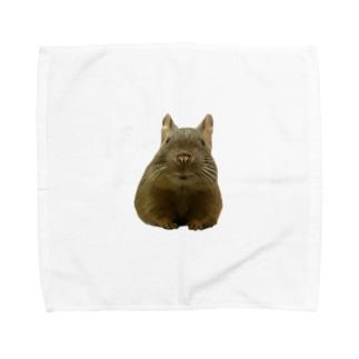 コムタン事務所のぼんやりそぼろ Towel handkerchiefs