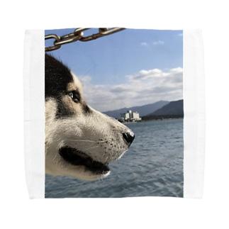 海を見るハスキー Towel handkerchiefs