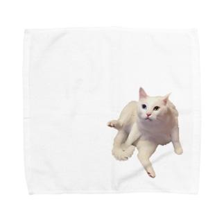白猫オッドアイのタマ お座りバージョン Towel handkerchiefs