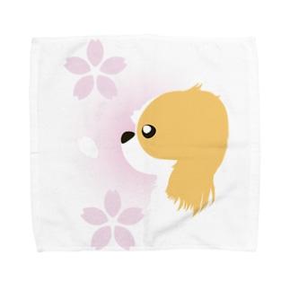 狆 Towel handkerchiefs