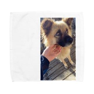ポッキーさんの上目使い Towel handkerchiefs