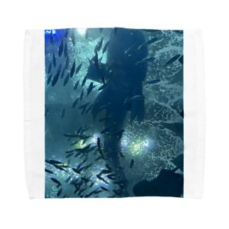 ジンベイザメ Towel handkerchiefs