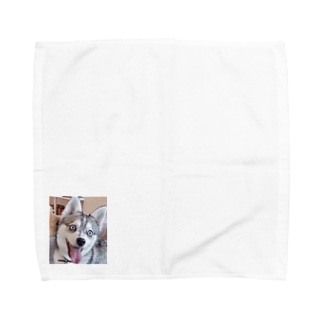 わいふぇの日常グッズ Towel handkerchiefs