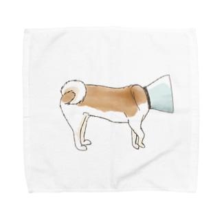 エリザベスカラーの犬 Towel handkerchiefs