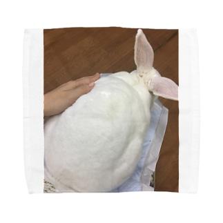 きゅうきょくのもふもふさん Towel handkerchiefs
