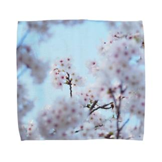 sakura2 Towel handkerchiefs