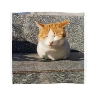 島の野良猫 Towel handkerchiefs