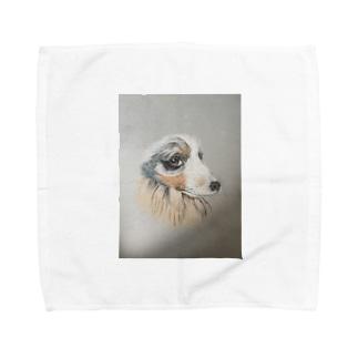シェルティタオル Towel handkerchiefs
