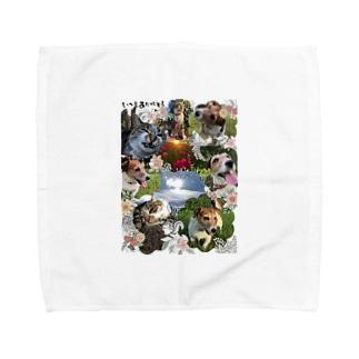 犬と猫 Towel handkerchiefs