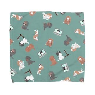 キャバリア CKCS感染症対策柄タオルハンカチ ミント Towel handkerchiefs