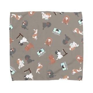 キャバリア CKCS感染症対策柄タオルハンカチ グレージュ Towel handkerchiefs