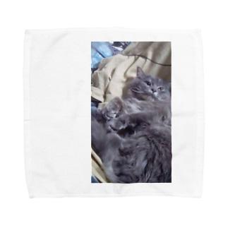 うちのくまたん Towel handkerchiefs