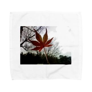 木立と紅葉 Towel handkerchiefs