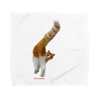 岸ちゃんおちり Towel handkerchiefs