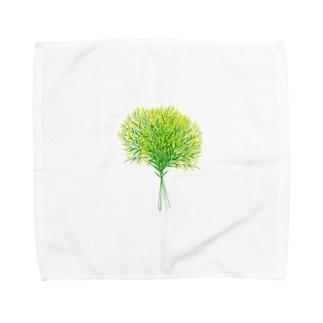 ソリダスター Towel handkerchiefs