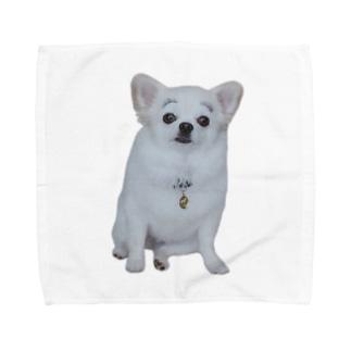 まゆげこむぎこ Towel Handkerchief