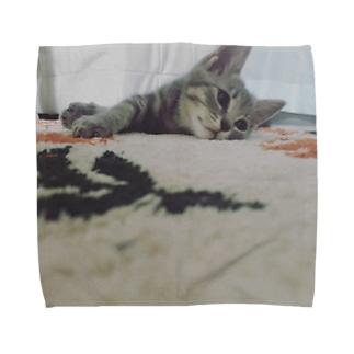 あっしゅくん① Towel handkerchiefs