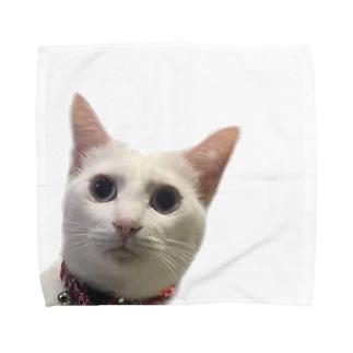 しらすの真顔 Towel handkerchiefs