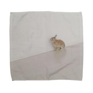 上を向こうさぎ、 Towel handkerchiefs