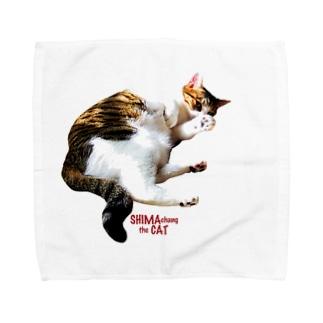 SHIMA chang the CAT Towel handkerchiefs