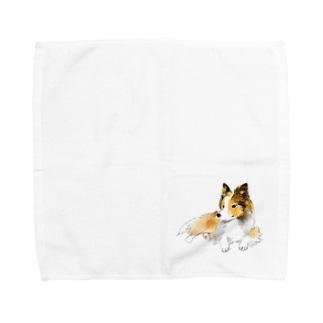 シェルティー(セーブル)グッズ Towel handkerchiefs