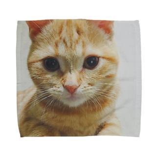 きなこと一緒 Towel handkerchiefs