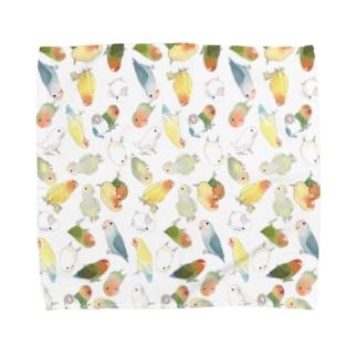 たっぷりラブバード(コザクラインコ・ボタンインコ)ちゃん【まめるりはことり】 Towel handkerchiefs