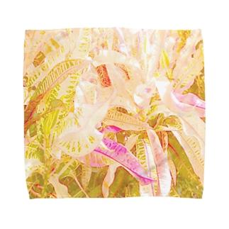 南国の葉っぱ2🌿 Towel handkerchiefs