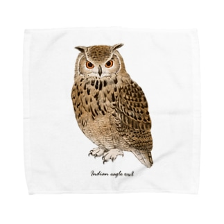 ベンガルワシミミズク カラー Towel Handkerchief
