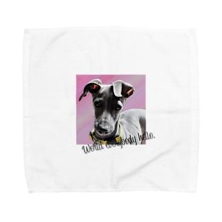 World everybody hello. イタグレ Towel handkerchiefs