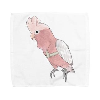 ご機嫌モモイロインコちゃん【まめるりはことり】 Towel handkerchiefs