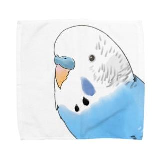 見つめるセキセイインコちゃん【まめるりはことり】 Towel handkerchiefs